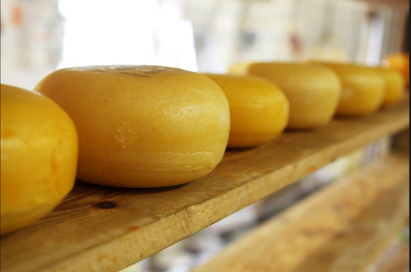 Conflating  Insulin, & Chymosin in Cheese to GMO Plants is PSEUDOSCIENCE